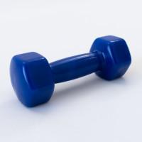 Гантели для фитнеса виниловая цельные (неразборные) OSPORT Profi 3кг (FI-0105-3) Синий